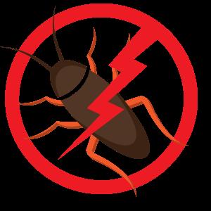 Pest Control Company Essex