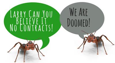 Pest Control Bromley